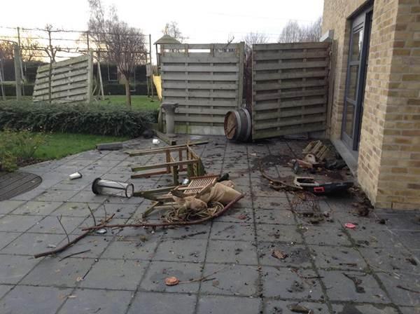 windschade op 25 januari 2014