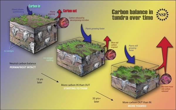 permafrost en opwarming