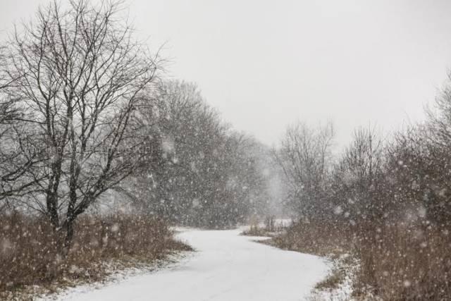 matige sneeuwval