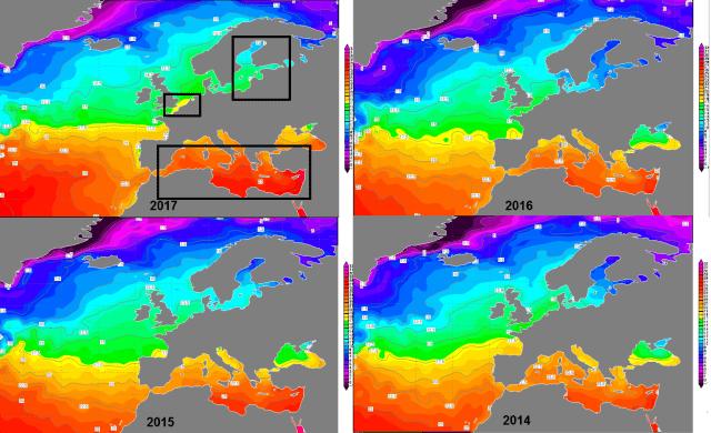 zeewatertemperatuur over de jaren heen