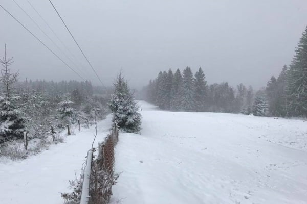 Sneeuw in de Ardennen