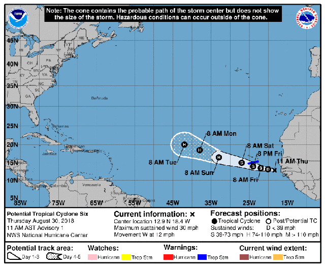 florence formation