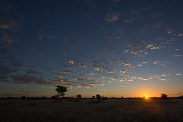 Altocumulus bij zonsopkomst