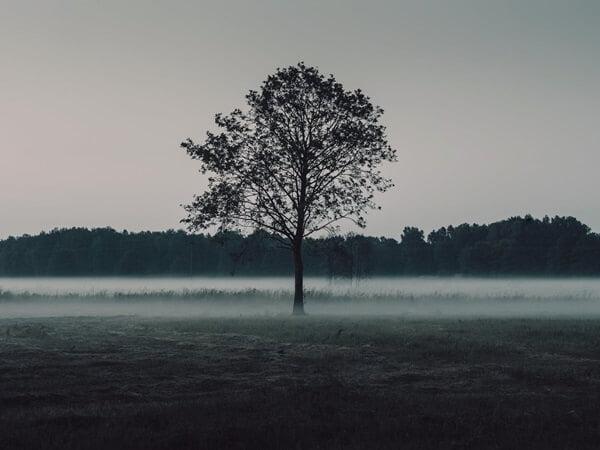 Ontstaan van mist door stralingskoude