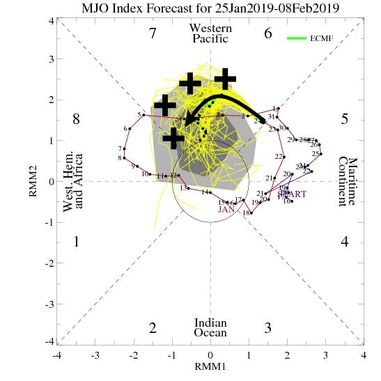 MJO-index voor de volgende periode.