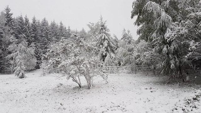 sneeuw Samrée